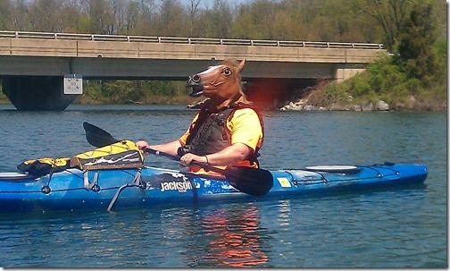 Kayaking horse...